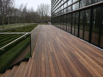 Terrasplanken bamboe informatie centrum nederland - Bamboe in bakken terras ...