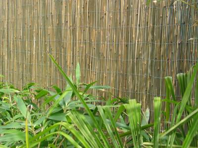 Hekwerken van bamboe bamboe informatie centrum nederland - Bamboe hek ...